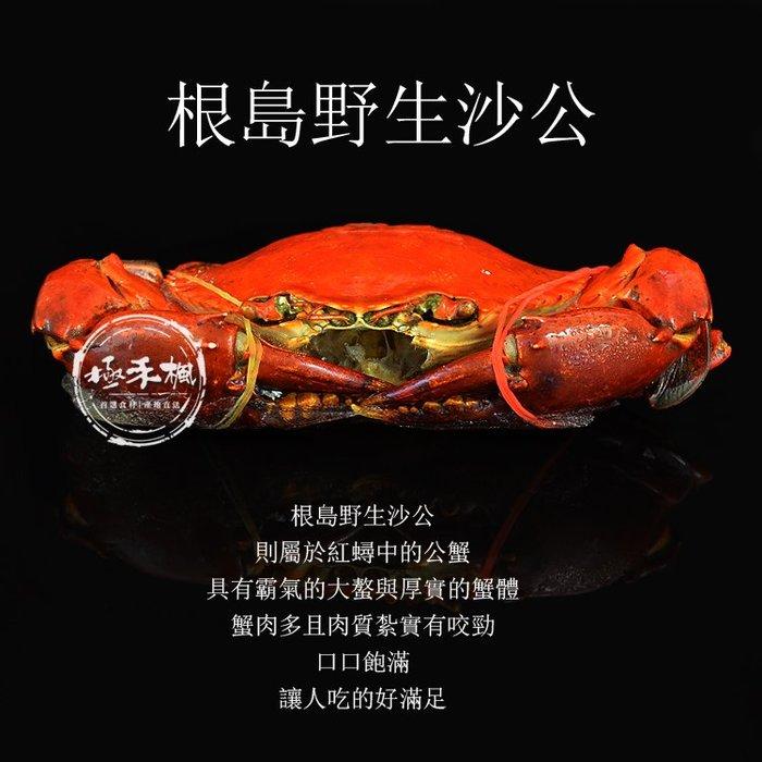 極禾楓肉舖~無毒 根島活力蟹(熟凍紅蟳)$399元/隻~每隻約400~450g