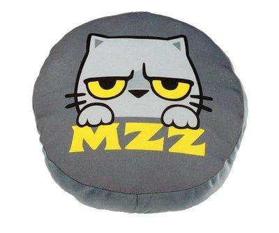 【貓爪抓MZZ】雙面暖手抱枕 2件以上免運 MIT精品 現貨供應