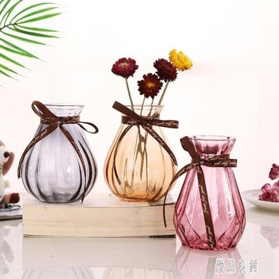 新款花瓶創意時尚 個性 水養歐式透明玻璃家用水培客廳桌面裝飾插