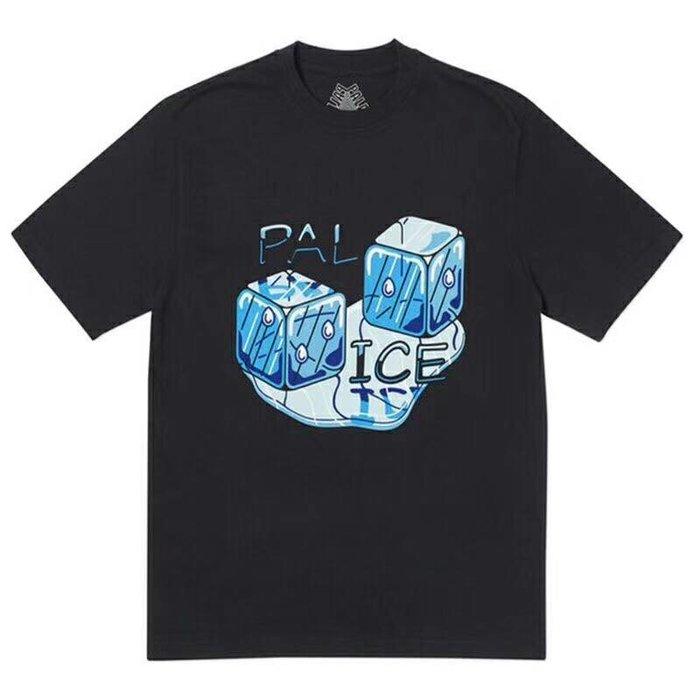 全新商品 Palace Skateboards 19SS Pal Ice 冰塊 短袖 TEE
