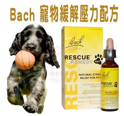 【愛美莉 】Bach 巴哈花精 動物/寵物安撫配方 貓/狗/鳥/馬 適用 20ml