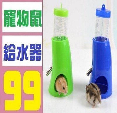 【三峽OGS】寵物鼠飲水器 老鼠 天竺鼠 鼠窩 加溫燈 保溫 鼠籠