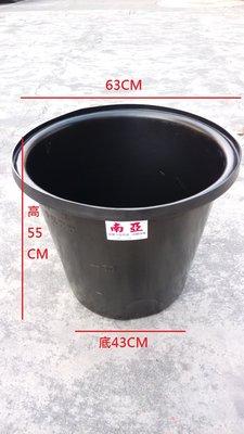 【峰.魚菜】魚菜共生,養殖箱,養殖桶,魚箱100公升尺寸:上部63CM,下部43CM,高55CM,會幫打溢水孔洞.