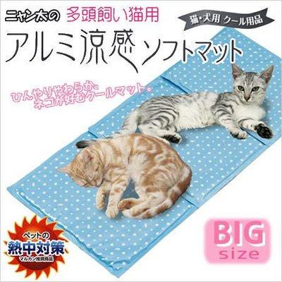 貝果貝果 日本Marukan新款 超涼水玉涼墊- 貓用 [CT-264] 另有CT-187