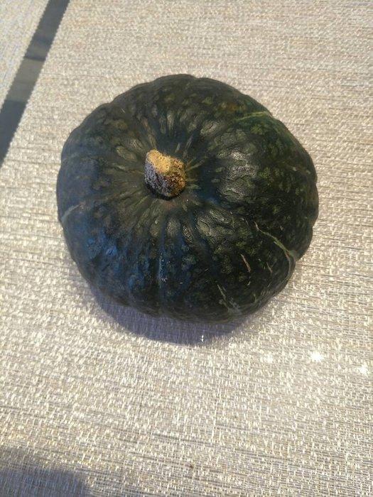 【n0900台灣最便宜】2018 Kabocha Squash日本南瓜種子每包5顆$30
