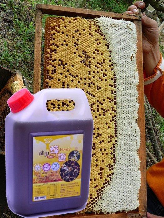 龍眼蜂蜜產地直售 5台斤 養蜂場自營 正龍眼花 品質保證檢驗合格 產區南投縣 國姓鄉