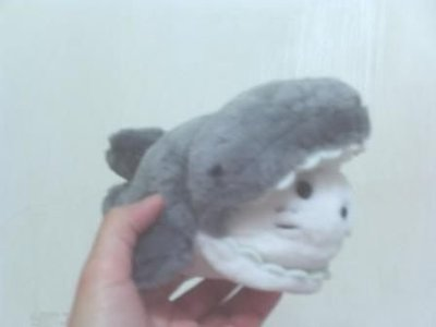 全新鯨魚(張嘴是海獺很可愛歐長約20公分)
