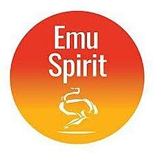 【澳洲必買】澳洲國寶 Emu Spirit Arthritic And Muscular Rub 鴯鶓按摩軟膏 55gm