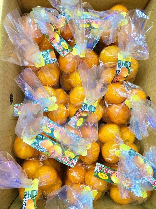 先詢問在下單-日本🇯🇵鹿兒島金桔🍊原裝15包(免運)