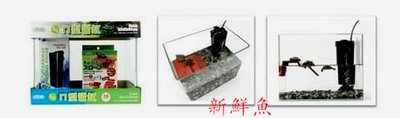 ~新鮮魚水族館~實體店面 ISTA伊士達 兩棲烏龜套缸 迷你【26cm 玻璃缸】26*17*20 含過濾及高台