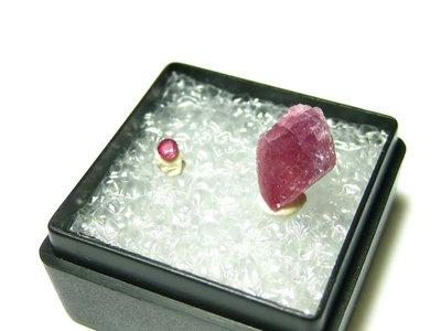 【Texture & Nobleness 低調與奢華】寶石教學標本&原礦 紅寶石 R-02
