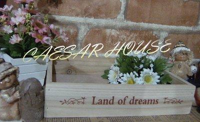 ╭☆凱薩小舖☆╮【超值鄉村】法式 Land of dreams 手漾木盒-中款可當收納盒/花器/花架.限量