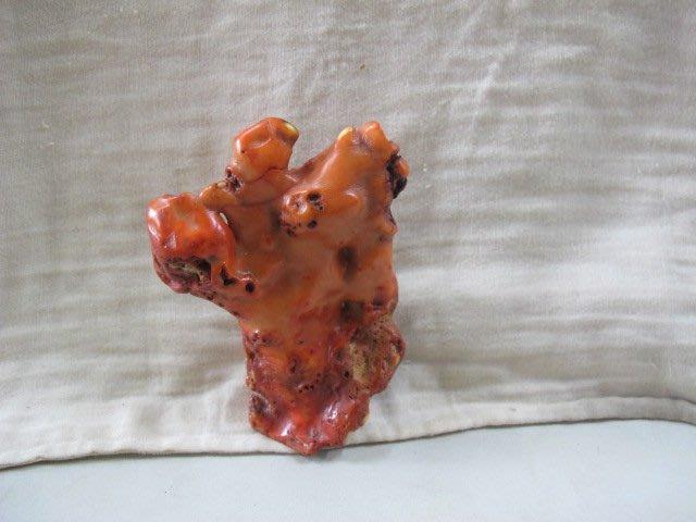 二手舖 NO.2214 稀有純 天然紅珊瑚原石擺件 原礦