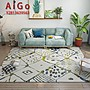 AIGO 北歐風地毯臥室滿鋪房間全鋪客廳床邊簡約現代家用墊茶幾ins地毯