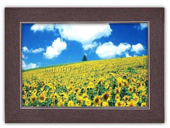四方名畫: 太陽花向日葵020 C尺寸  含實木框/厚無框畫 畫質細緻 裝飾畫MIT可訂製尺寸