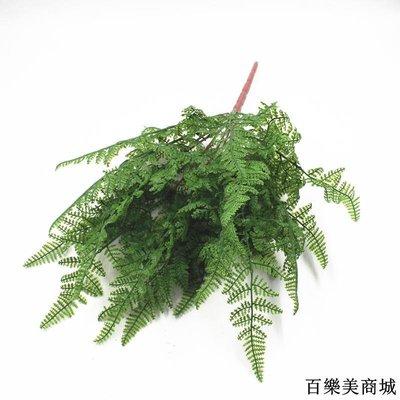 三件起出貨唷 仿真假花塑料花綠植盆栽裝飾蕨類植物餐桌擺放花藝手感波斯草蕨草全店免運中