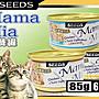 【??培菓寵物48H出貨??】Seeds》MamaMia雞肉貓餐罐貓罐-85g 特價20元(自取不打折)(蝦)