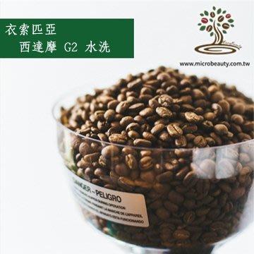 [微美咖啡]-超值1磅350元,西達摩G2 水洗(衣索匹亞)淺焙咖啡豆,500免運,新鮮烘培