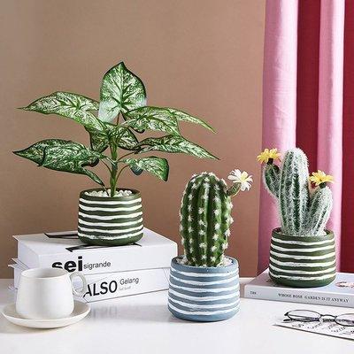 假花北歐ins風迷你假花盆栽仿真綠植創意植物盆景小擺件桌面裝飾室內不凋花