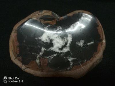 【Sun art -七絕樓】龜甲石茶盤
