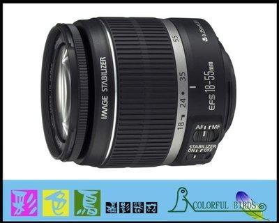 彩色鳥 (租 相機 鏡頭)租 Canon EF-S 18-55mm F3.5-5.6 IS  90D 80D 70D