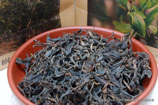吻潤千家寨2010年野生普洱茶散茶(500公克/包)和平藝坊感性分享