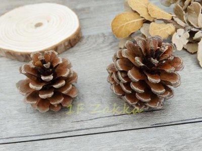 壹樓雜貨 1F Zakka-鄉村風【鄉村日式雜貨--天然乾燥原色小松果1顆價(約3-5cm)-乾燥花圈素材】