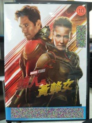 挖寶二手片-Z53-003-正版DVD-電影【蟻人與黃蜂女】-保羅路德 伊凡潔琳莉莉(直購價)