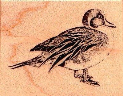 陽光一品DIY卡片印章專賣店~PSX木頭印章~~野鴨~##C440##~美國製絕版品