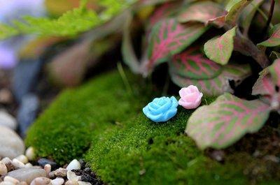 【泥龜 ☘️迷你 玫瑰花_中號】仿真花 微景觀 多肉 植物 仙人掌 擺飾 zakka 花盆 裝飾 擺件 園藝 拍攝道具