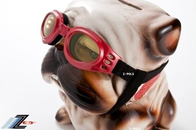 【Z-POLS 小型狗狗專用款】頂級包覆式軟墊超防風、抗紫外線運動眼鏡!含運送專用盒(9款可選)