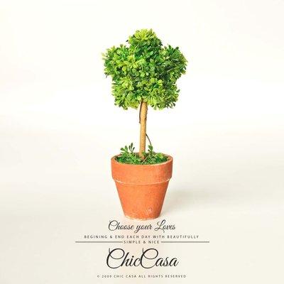 仿真樹苗盆栽20cm 星星 6款 草球桌上盆景人造花小樹【Chic Casa 奇可家居】 020803004