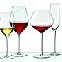 ☆波西米亞人☆斯洛伐克RONA 歡慶系列 Celebration專業酒杯 波爾多杯 660ml
