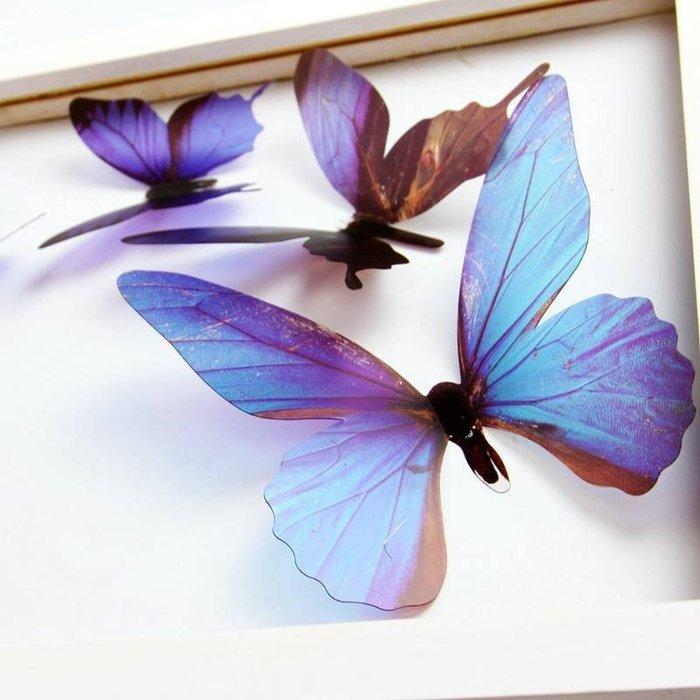 ☆║♥愷心小舖♥║☆歐美進口~創意立體 3D 浪漫 蝴蝶  化妝室 臥房  婚佈背景  華麗~超值18隻一套!藍色款~