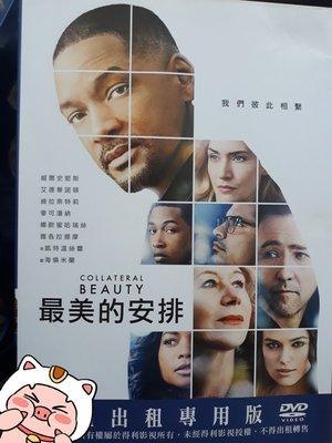APPLE 影音 台灣正版二手DVD【最美的安排】