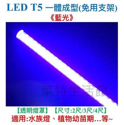 《萊特生活館》LED水族燈 T5 【2呎】【藍光】【不斷光型/免支架】 【保固1年】燈泡/日光燈/植物燈批發