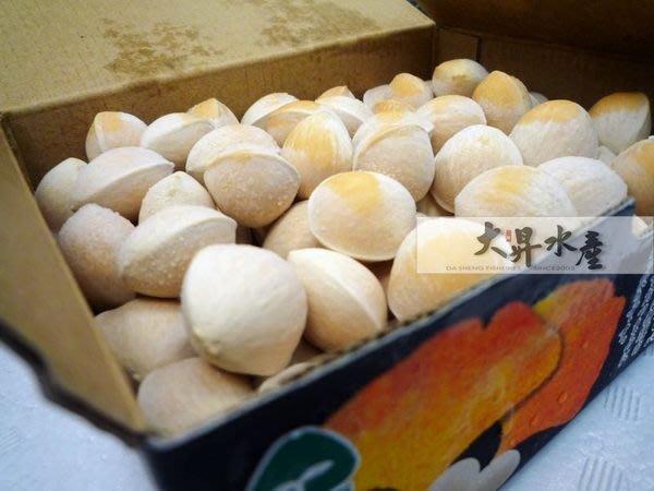 【大昇水產】*獨賣最高級3L*日本原裝進口愛知縣產祖父江大粒丸型銀杏