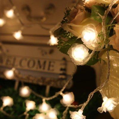 LED彩燈led彩燈閃串燈喜慶圣誕樹玫瑰花情人節婚慶創意結婚用品春節裝飾