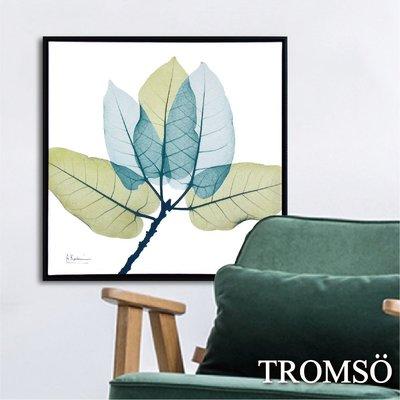 TROMSO 北歐時代風尚有框畫-藍綠葉脈WA026-50x50cm/清新葉子客廳布置 大樹小屋【H0313082】N1