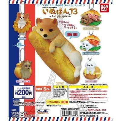 BANDAI  扭蛋 轉蛋 可愛點心狗 13 P13 柴犬 麵包犬 麵包狗 全6款 日版 現貨 !