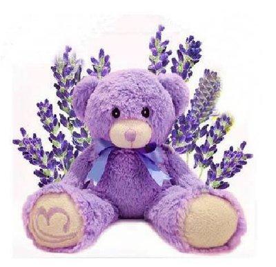 Bridestowe Lavender Bear 張馨予同款薰衣草熊