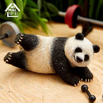 【QQ公仔物語】【NB009】【現貨滿千免運】 朝隈俊男 Animal Life Shaking 盒玩 單賣 熊貓