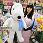 台南卡拉貓專賣店 台灣版權俏皮狗 預購款 超像史努比 玩偶 圍巾隨機出貨不挑色 正版 俏皮狗娃娃 可繡字 可明天到