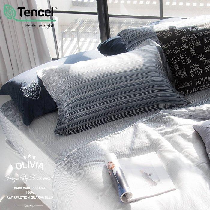 【OLIVIA 】DR8006 亞伯特   歐式薄枕套【兩入】300織天絲™萊賽爾 台灣製