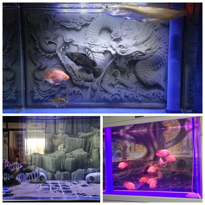 熱賣定做魚缸背景紙龍圖裝飾造景高清水族箱背景畫3d立體龍貼紙壁畫制#背景紙#高清#水族用品