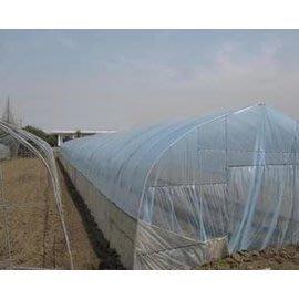 【單體溫室大棚-GP-625-0610】溫室大棚骨架  寬6長10米間距1米 肩高1.5米頂高2.5米-5101007