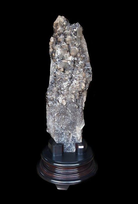 【喬尚拍賣】骨幹水晶(2)鱷魚骨幹.重50.9公斤