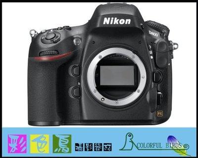彩色鳥 (相機出租 鏡頭出租 DV出租) Nikon D800 + Nikon AF-S 85mm f1.8G D700 D300s D7000 台北市