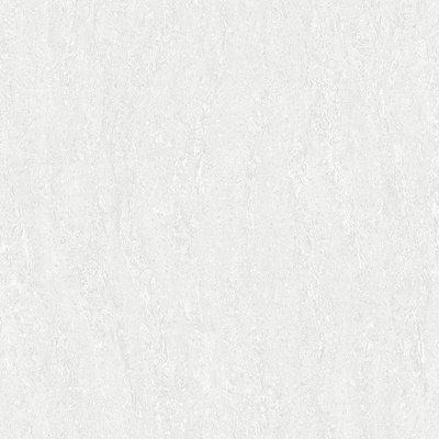 【HS磁磚衛浴生活館】白馬磁磚60x60石英晶釉瓷板典藏 餐廳客廳商空皆適用