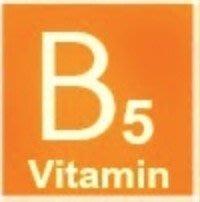 【冠亦商行】維他命B5 維生素B5【1...